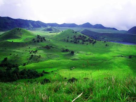 Forêt dans la région de la Lobaye (République Centrafricaine)